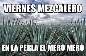 Meme Store - meme picture of la perla pixan cuisine mezcal store playa del