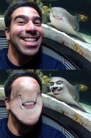Meme Funny Face - funny face swap
