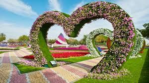 top flower garden wallpaper images hd photos gallery download