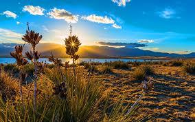 sunset bluestem praire colorado springs 6935150