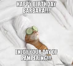 Happy Birthday Cat Memes - happy birthday barbara enjoy your day of pering pered