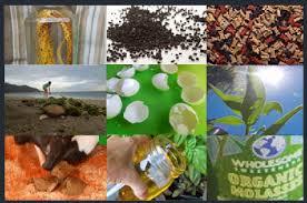10 natural fertilizer recipes home grown fun