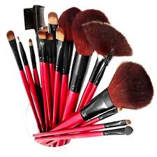 shany professional quality cosmetic makeup brush set with pouch