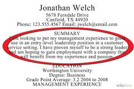 Resume Overview Example by Brief Summary Of Background For Resume 5808
