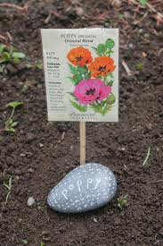 Painted Rocks For Garden by Painted Rocks Round Up