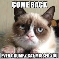 Grump Cat Meme Generator - come back even grumpy cat missed you sad grumpy cat meme generator