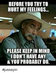 Hurt Feelings Meme - 25 best memes about hurt my feelings hurt my feelings memes