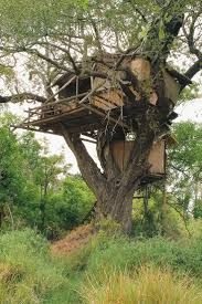 the 482 best images about treehouses on pinterest