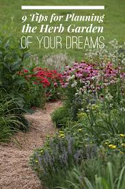 herbal garden 9 tips to the garden of your dreams chestnut school of herbal medicine