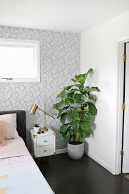 6 house plants to grow in your bedroom that can dramatically snake lauras bedroom before after a beautiful mess tour click through for more kitchen and dining