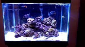 current usa orbit marine aquarium led light orbit marine led by current usa youtube