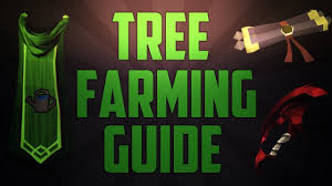 Fruit Trees Runescape - runescape l farming tree u0026 fruit tree run guide 2013 youtube
