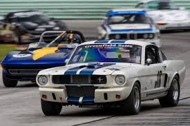 racing mustangs vintage racing mustangs and gt40s