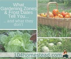 Gardening Zones - what gardening zones tell you u0026 what they don u0027t