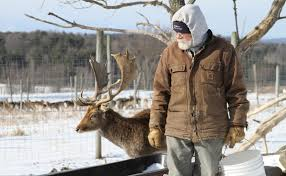 deer farming the next adventure in agriculture modern farmer