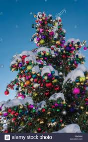 colourful ornaments on a tree on