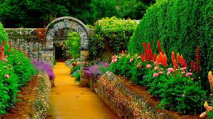 Flower Gardens Wallpapers - flower garden alley 4248222 1920x1080 all for desktop
