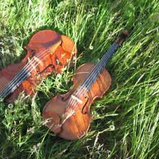 fiddle lessons kijiji in ontario buy sell u0026 save with