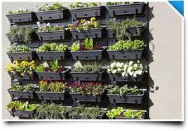 Bunnings Trellis Whites Bunnings Diy Vertical Garden Video