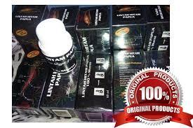 minyak lintah hitam papua pembesar penis toko obat herbal