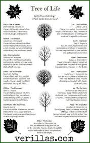 celtic trees and personality traits i am not sure that this is