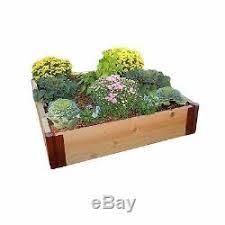 outdoor 4x4 feet wooden cedar raised vegetable garden grow planter
