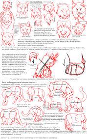 big cat anatomy sketches bloodlust carman deviantart cats