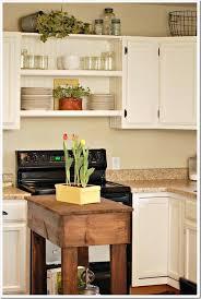 Winnipeg Kitchen Cabinets Decor Kitchen Cabinets Winnipeg Best Above Cabinet Ideas On