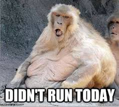 Baboon Meme - why post xmas weight gain memes are not funny the fat girls
