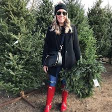 Christmas Tree Raleigh Find The Perfect Tree At The Downtown Raleigh Pop Up Christmas Tree