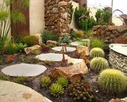 Succulent And Cacti Pictures Gallery Garden Design Download Cactus Gardening Solidaria Garden