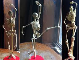 poseable skeleton tara donovan animator posable skeleton of awesomeness