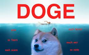 Doge Meme Tumblr - doge screensaver impremedia net