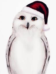 owl christmas snowey christmas owl by isaiahstephens on deviantart