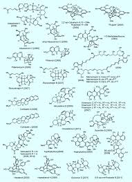 constructing molecular complexity and diversity total synthesis