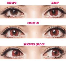 444 best cat contact lenses images on pinterest eye contact