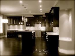 Dark Wood Floor Kitchen by 427 Best Standard Paint And Flooring Dream Kitchen Contest