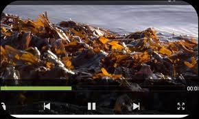 mx player apk free play mx player apk free players editors