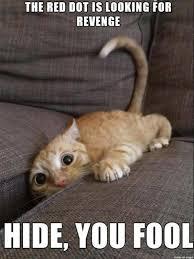 Thinking Cat Meme - best 20 cat memes10 thinking meme