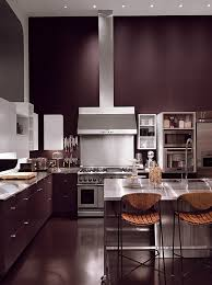 kitchen walls and cabinets in the same color cool favorite