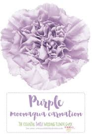 purple wedding bouquets complete guide to purple wedding flowers purple flower names pics