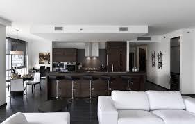 modern living room kitchen combo interior design