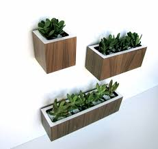 Beautiful Modern Indoor Planter Ideas Trends Thira Us Planters