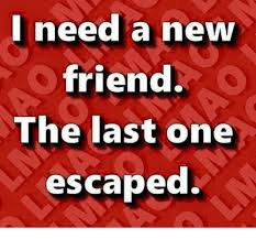 I Need New Friends Meme - i need a new friend the last one escaped friends meme on me me