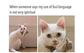 Spiritual Memes - 26 hilarious spiritual memes that are just way too true