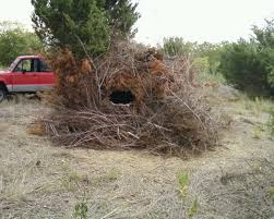 Building A Hunting Blind Lets See Simple Diy Blinds W Cattle Panels Texasbowhunter Com