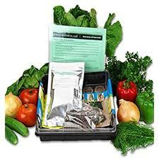 amazon com window garden organic tomato grow kit easy to grow
