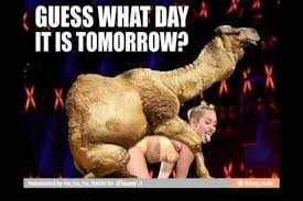 Miley Cyrus Meme - image 598222 miley cyrus know your meme