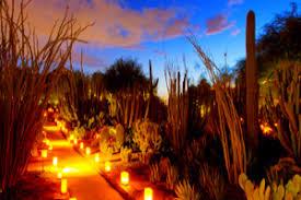 Scottsdale Botanical Gardens Desert Botanical Garden Arizona Age Travel Guide
