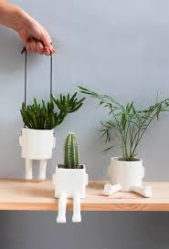 best 25 ceramic plant pots ideas on pinterest plants indoor